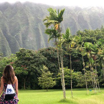 HAWAII – HO OMALUHIA  OAHU
